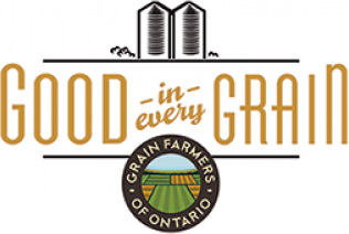 Good in Every Grain logo
