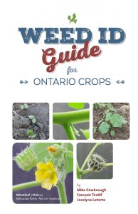 Weed ID Guide for Ontario Crops
