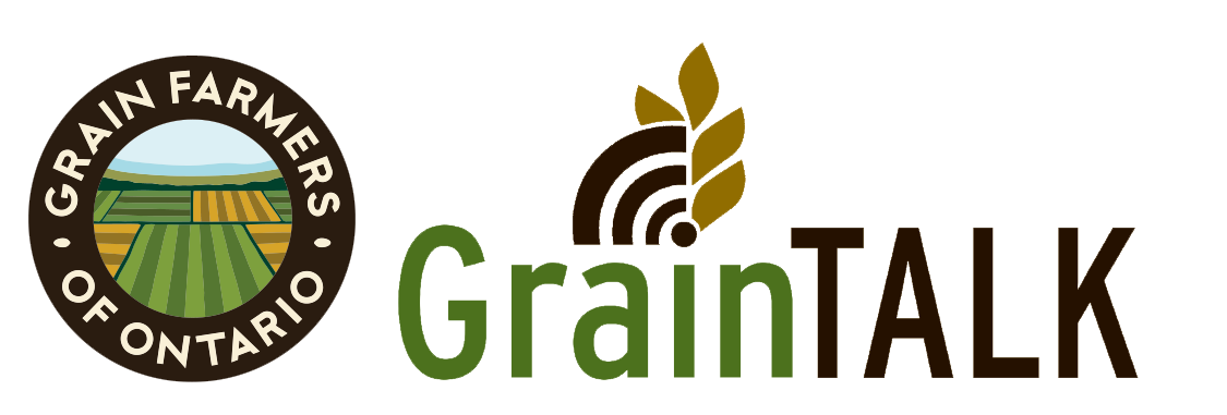 graintalk logo