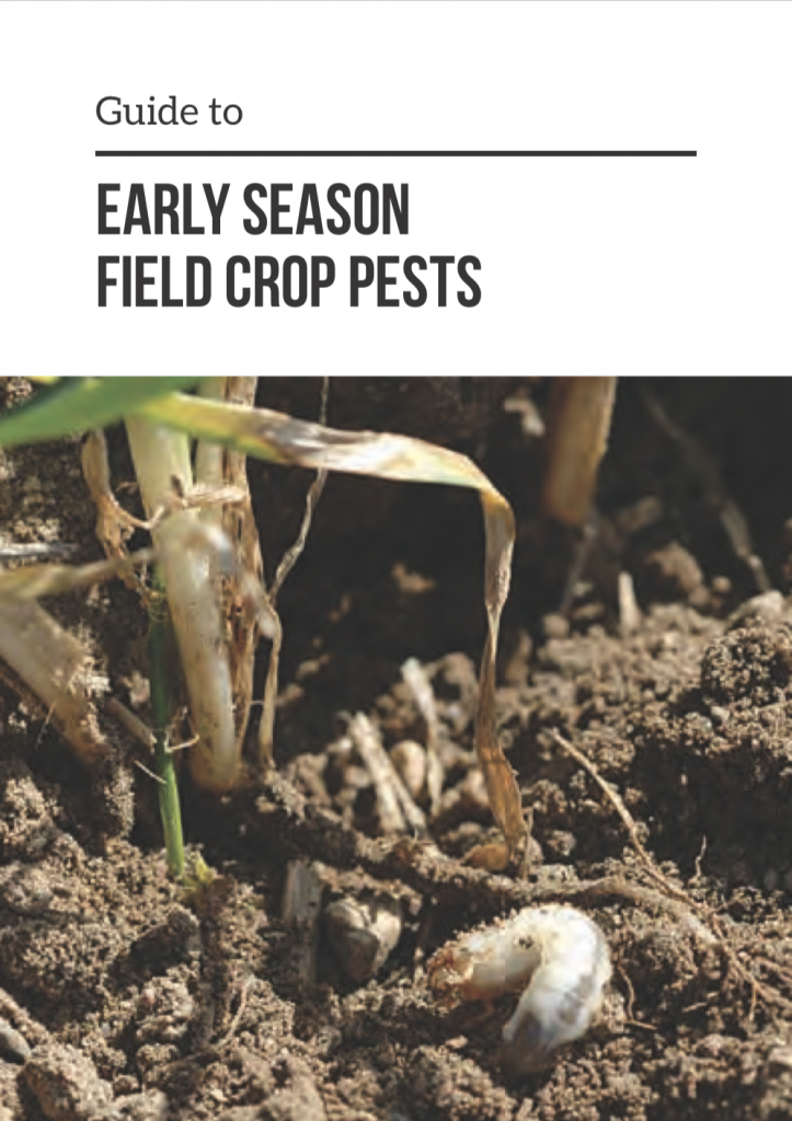 The cover of the report Early Season Field Crop Pests showing a close up of soil