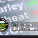 Ontario Grain Market Commentary